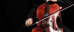 violoncelle instrument