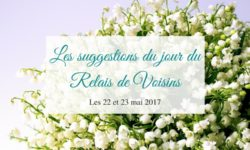 Suggestions du Relais de Voisins des 22 et 23 mai 2017